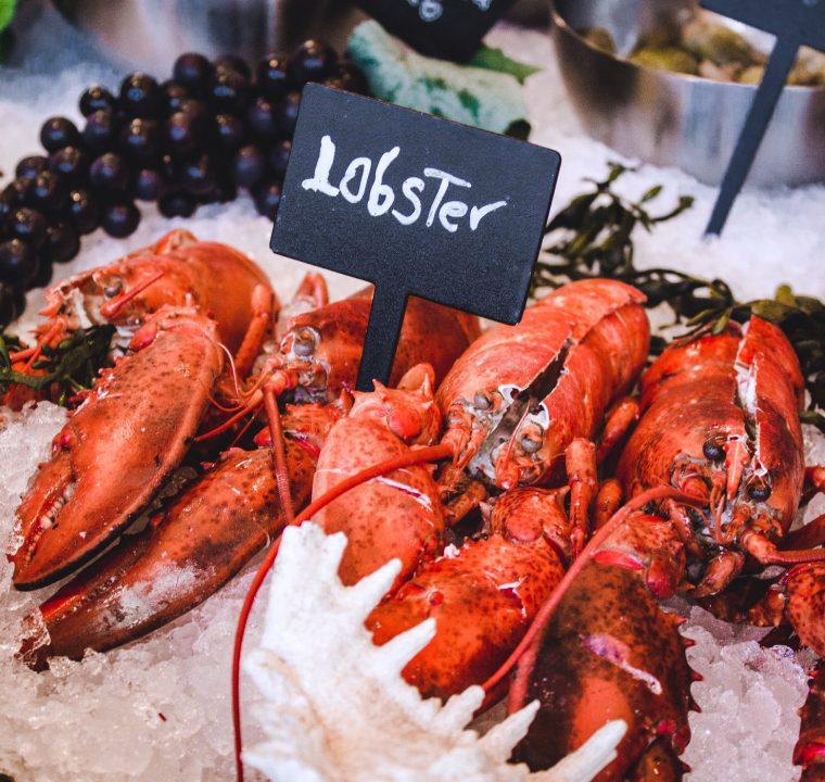 What to Eat in Boston – Lobster Edition